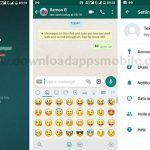 Multi WhatsApp: 3 extra WhatsApp accounts