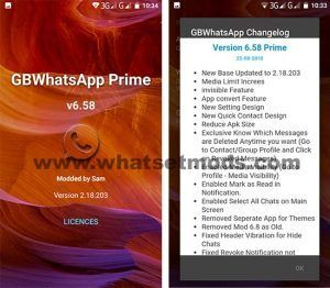 GBWhWhatsApp Prime Transparent 6.58