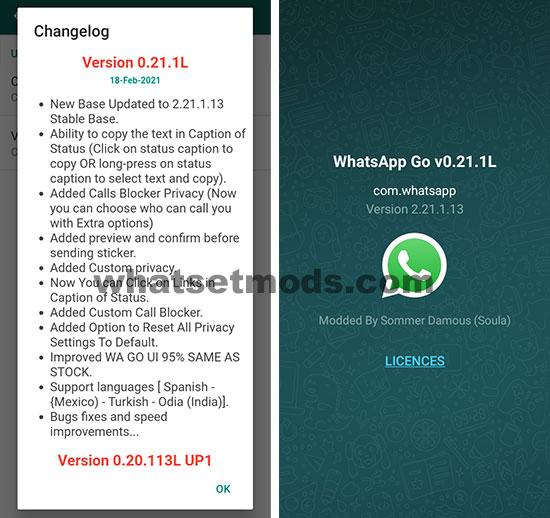 Image avec les dernières nouvelles fonctionnalités de version 0.21.1L de WhatsApp GO 2021