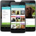 Miwuki, la aplicación para adoptar mascotas
