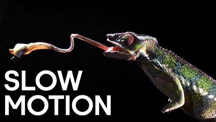 Grabar vídeos slow motion