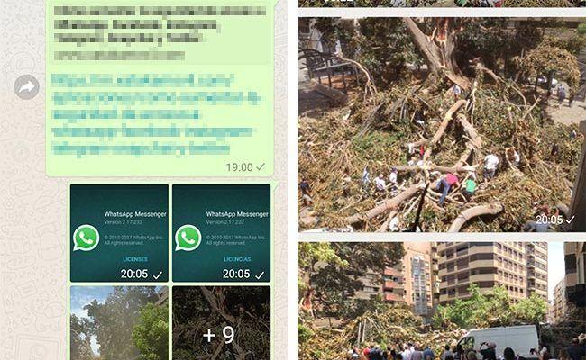 Los álbumes vuelven a WhatsApp para Android