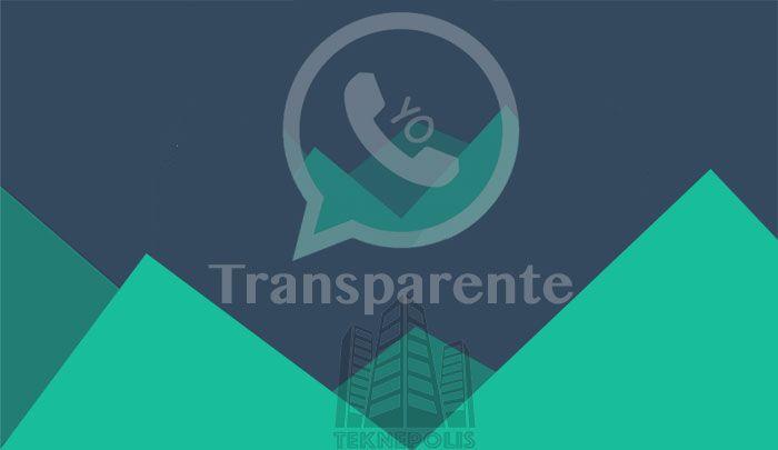 YOWA Transparente